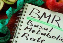 основной уровень метаболизма