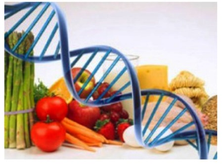 гены похудения