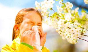 аллергический-поллиноз