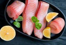 Photo of Рыба Тилапия – вред или польза, рецепты приготовления