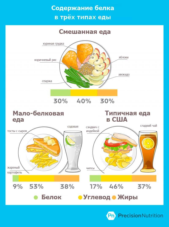содержание-белка-в-еде